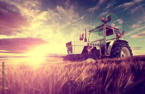 Tractor.Campos de trigo paisaje ,granja y puesta del sol