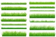 Set Of Spring Green Grass Horizontal Borders. Green Grass Collec