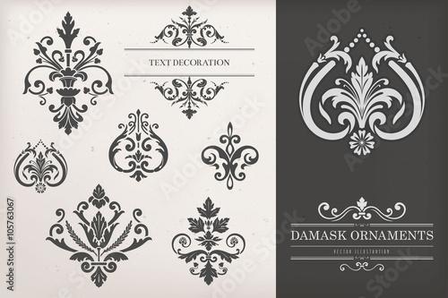 Fotografie, Obraz  Vintage Damask Ornaments