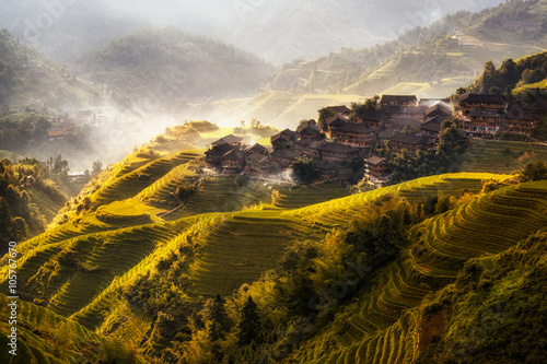 Foto op Canvas Bleke violet longji rice terrace in dazhai village in guangxi province of china. Longsheng, China