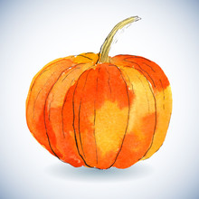 Watercolor Pumpkin On White Background.