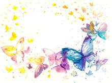 Beautiful Watercolor Butterfly...