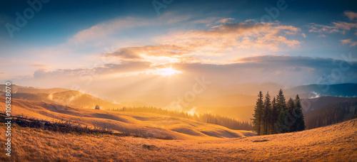 Poster Bleu nuit Gold Carpathian light