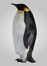 Penguin Bird Standing And Looking Vector