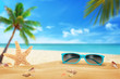 Sun glasses on beach. Starfish and shells on sand. Beach and sea with palm in background.