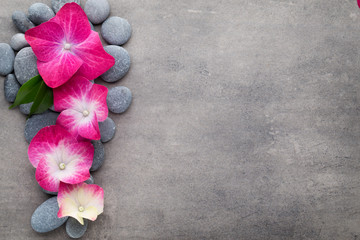 Obraz na płótnie Canvas Spa stones and flowers, on grey background.