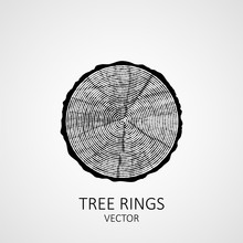 Annual Tree Rings. Saw Cut Tre...