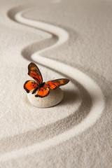 Fototapeta na wymiar Zen butterfly