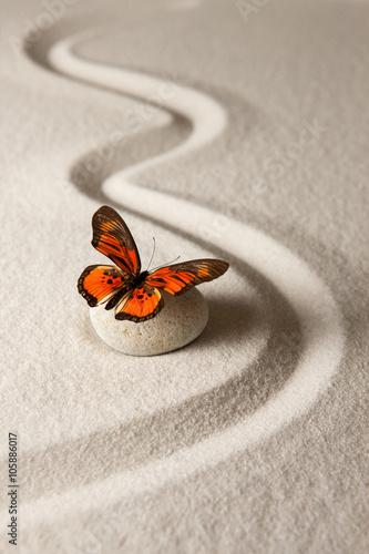 Acrylic Prints Stones in Sand Zen butterfly