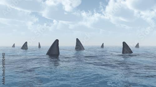 Fotografía Ansammlung von Haien