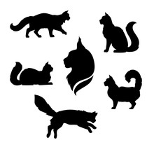 Maine Coon Cat Icons And Silho...