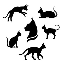 Sphynx Cat Icons And Silhouettes.