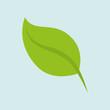 leaf icon design