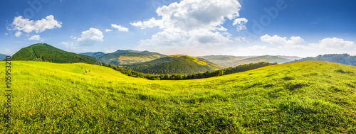 Canvas Prints Hill hillside meadow in high mountains