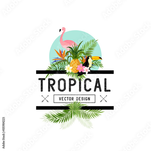Photo  Tropical Design Elements