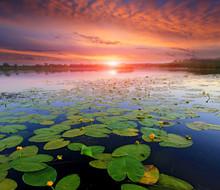 Sunset Over Lake Surface