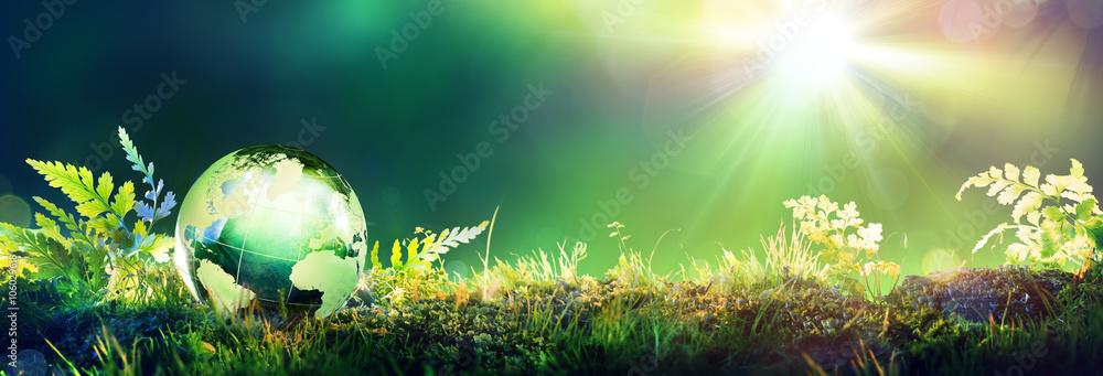 Fototapeta Green Globe On Moss - Environmental Concept