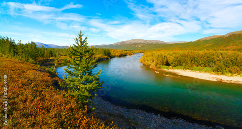 Foto auf Gartenposter Fluss Mountain blue clear river in colorful autumn taiga forest on a sunny day with blue sky and white clouds