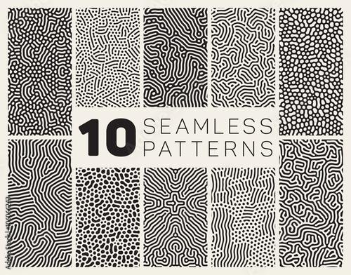 Fotografie, Tablou  Ten Vector Seamless Black and White Organic Patterns