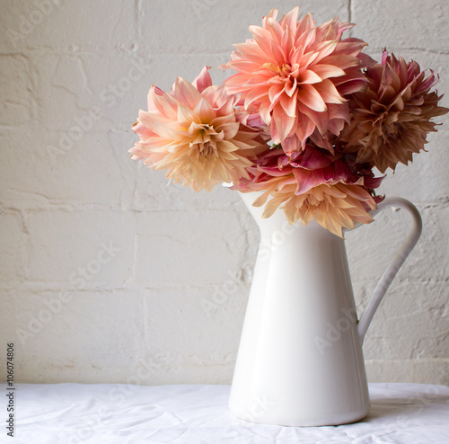 Leinwand Poster Coral pink dahlias in a white jug on a white tablecloth against a white brick wa