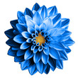 canvas print picture - Surreal dark chrome blue flower dahlia macro isolated on white