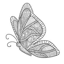 Detailed Ornamental Sketch Of ...