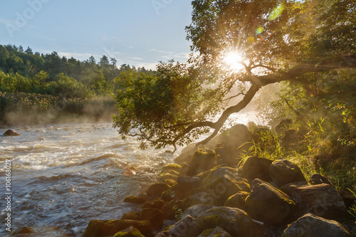 Morning summer landscape on the river with rapids and mist in Karelia on Ladoga. River Asilanyoki