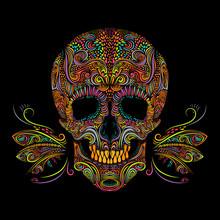 Decorative Color Skull