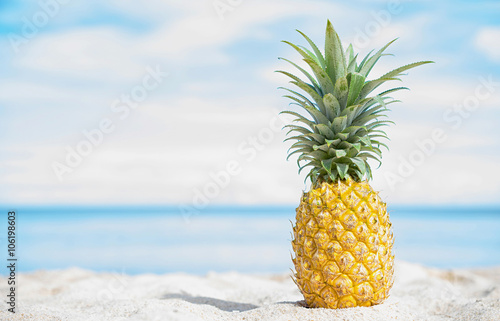 Pineapple on the beach with blue sky and sea background.