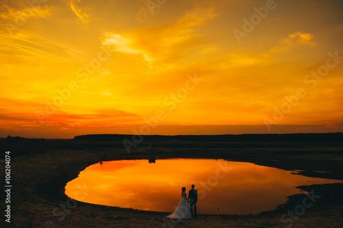Fotografie, Obraz  wedding couple on the background of sunset