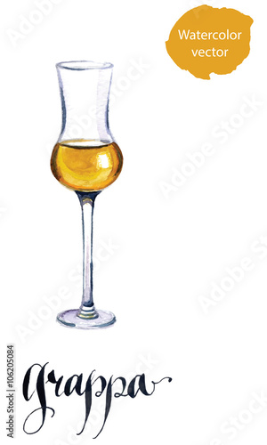 Glass of Italian grappa brandy Canvas Print