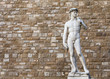 canvas print picture - David by Michelangelo in Florence, Italy