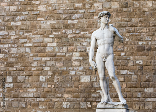 Photo  David by Michelangelo in Florence, Italy