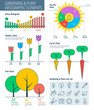 Infographic elements. Gardening infographic concept, gardening icons, infographic vector flat design template, charts and graphs. Gardening tools, garden furniture, gardening icons, infographic icons.