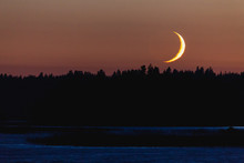 Crescent Moon Setting Behind F...
