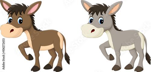 Cuadros en Lienzo Funny donkey cartoon