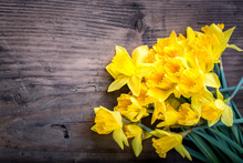 Bunch Of Yellow Daffodils With...