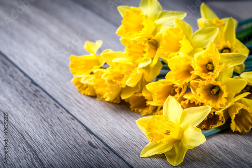 Fotobehang Narcis Bunch of yellow daffodils with blossom