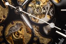 Luxury Watch Part. Swiss Made