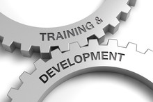 Training & Development