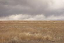 Prairie Under A Stormy Sky