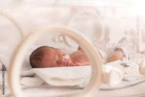 Fotomural  Premature newborn  baby girl