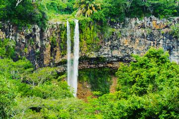 Fototapeta na wymiar Chamarel falls in jungle of Mauritius island. Africa