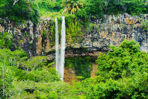 Obrazy na płótnie Canvas Chamarel falls in jungle of Mauritius island. Africa
