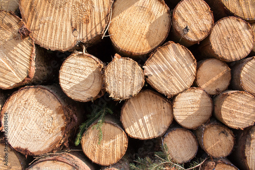 Recess Fitting Firewood texture wood logs background