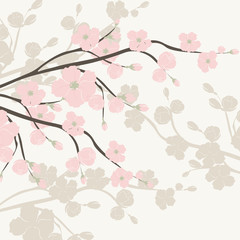 NaklejkaSpring is coming background tree with blossom flowers. Vector spring background. cherry blossoms on tree branches. Cream color