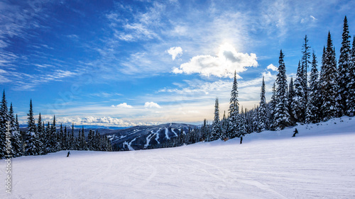 Fotografie, Tablou  Skiing down smooth slopes under blue sky in the high alpine ski area at Sun Peak