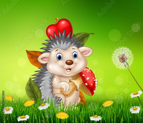 Spoed Fotobehang Lieveheersbeestjes Cute little hedgehog sitting in the beautiful grass background