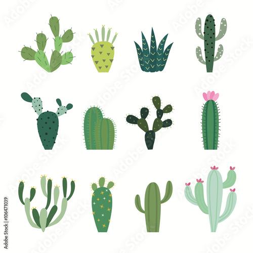 Cuadros en Lienzo Cactus collection in vector illustration