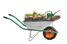 Wheelbarrow Full Of Gardening Equipment